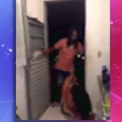 Mulher é espancada pelo ex-marido em Ponta Grossa