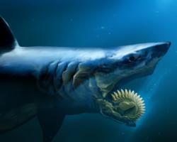 Você encararia um desses bichos de frente? Conheça 9 animais com dentes super estranhos