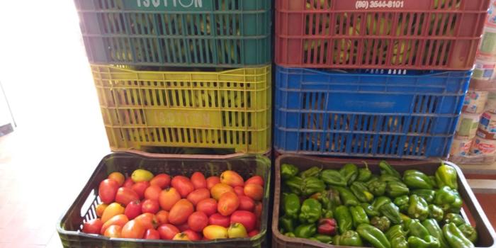 Semec de Uruçuí incrementa a merenda escolar com produtos da agricultura familiar.