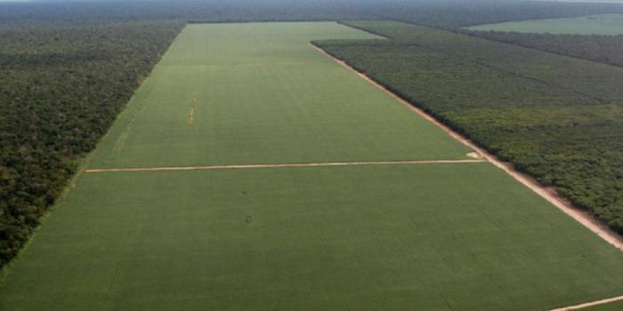 Secretaria de Agricultura faz parceria com o INCRA e tem papel importante na regularização fundiária