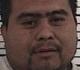 """Homem é preso durante fuga após parar para """"sexo com vaca"""""""