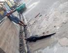 População encontra jacaré andando por ruas e o amarram em coleira