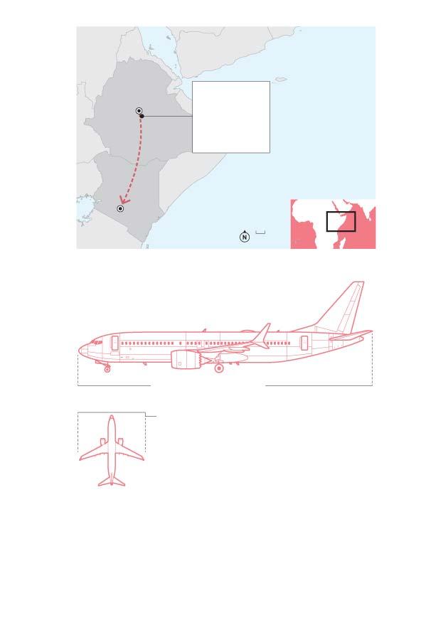 Apenas 1 companhia aérea brasileira usa o modelo que caiu na Etiópia  - Imagem 1