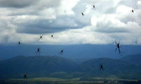 Saiba 7 coisas sinistras que já caíram do céu e causaram espanto - Imagem 1