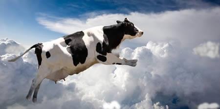 Saiba 7 coisas sinistras que já caíram do céu e causaram espanto - Imagem 2