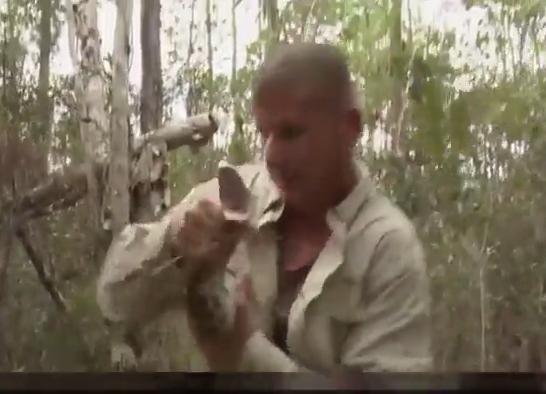 Homem provoca cobra píton e é picado no rosto; assista ao vídeo - Imagem 1