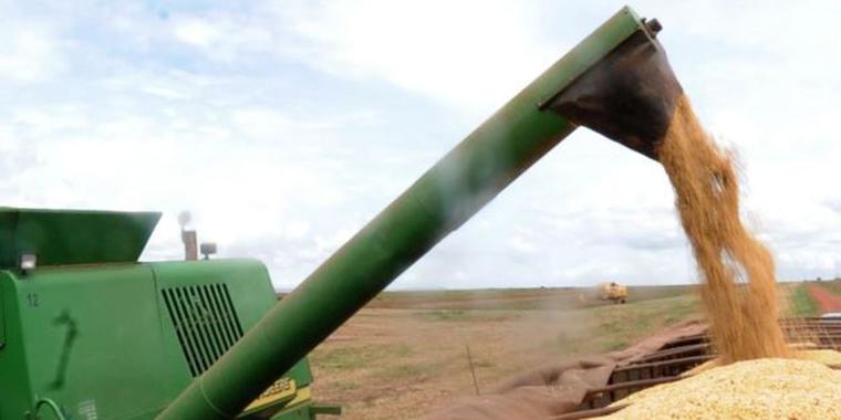 IBGE prevê safra de grãos 2,2% maior neste ano