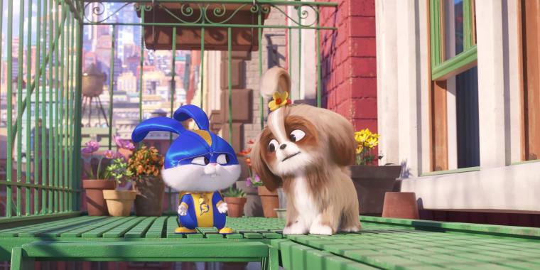 Pets- A Vida Secreta dos Bichos 2 e Anabelle 3 estreiam nos cinemas