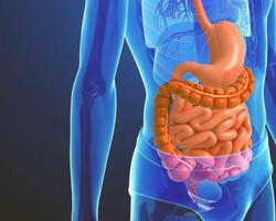 Especialista fala sobre câncer gastrointestinal