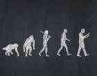 Quando e por que os seres humanos começaram a falar?