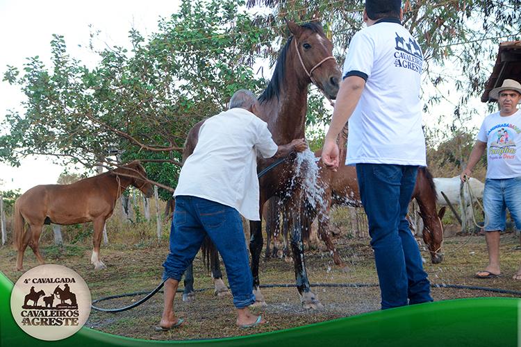 Amigos mantem viva tradição e fazem 4ª Cavalgada Cavaleiros do Agreste - Imagem 1