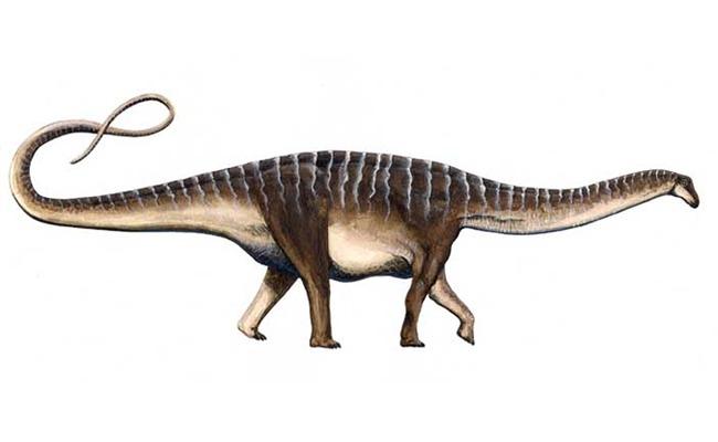 Amazonsaurus Maranhensis