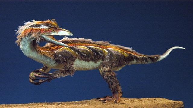 dinossauro-primitivo01