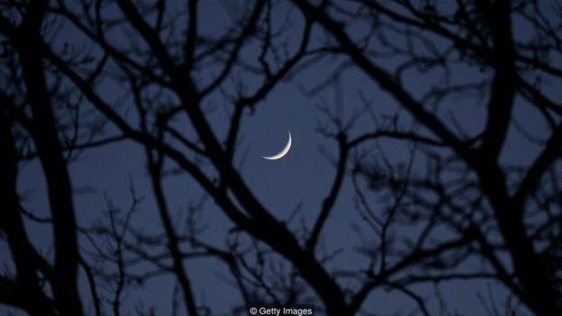 Lua nova no céu escuro entre sombra de galhos de árvores