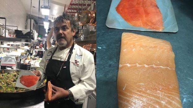 chef mostra diferenças entre salmões de cativeiro e selvagens