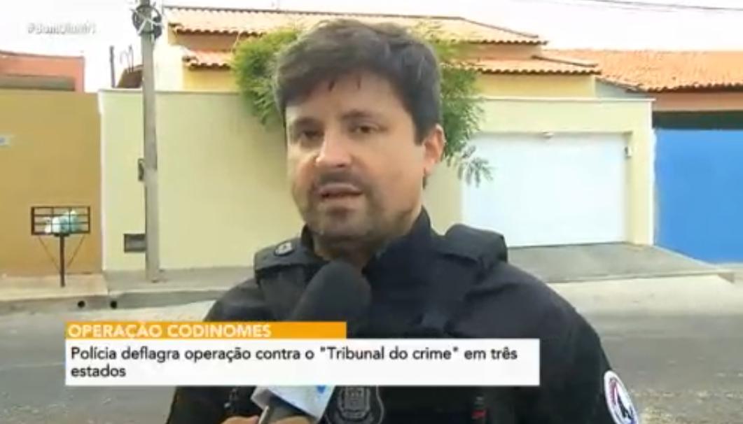 Polícia deflagra operação contra o tráfico de drogas no PI, MA e SP - Imagem 1