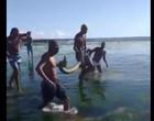 Jiboia gigante é encontrada por banhistas em praia de Salvador; Vídeo