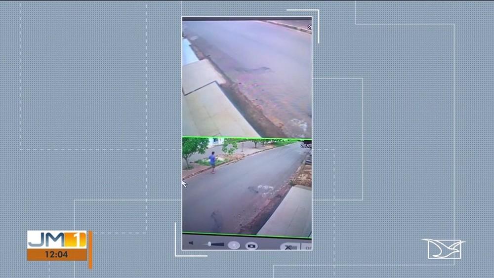 Comissão da OAB cobra que PM que atirou em cadela receba punição no MA - Imagem 1