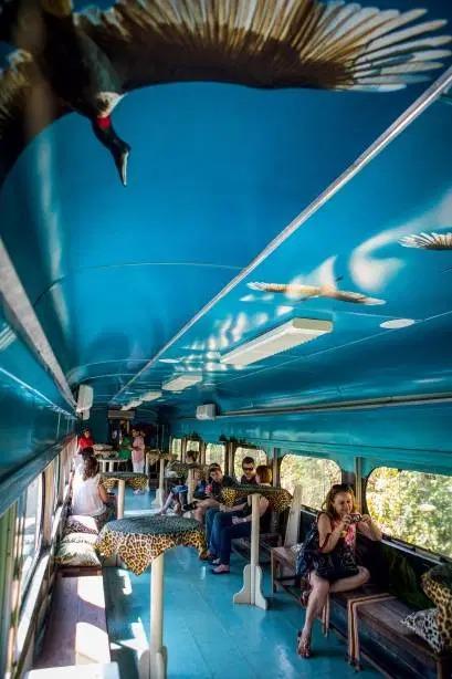 Estampas de onça fazem todo o sentido no Trem do Pantanal
