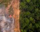 Fazendeiro acusado de desmatamento na Amazônia tem bens bloqueados