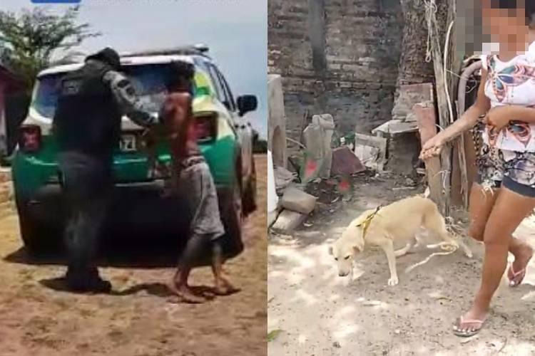 Homem é preso suspeito de estuprar cachorra em Piripiri (Reprodução/ Piripiri Repórter)