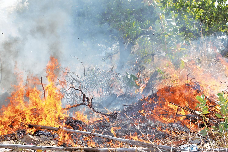 Registro de queimadas no Piauí / Crédito: Meio Norte