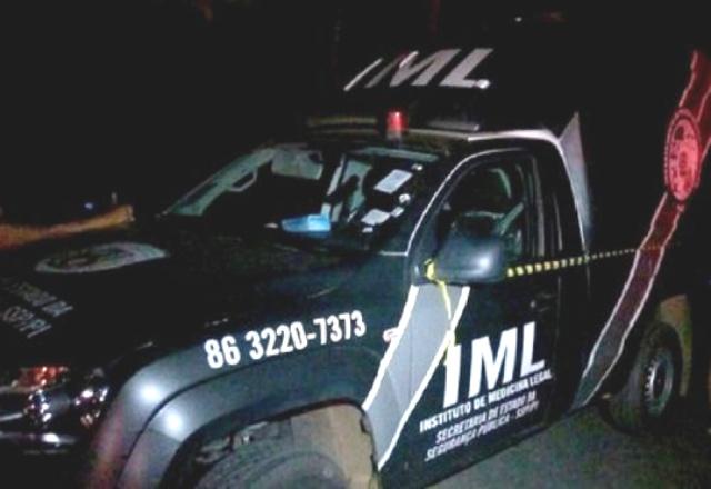 Idoso morre após colidir motocicleta em animal na PI-113 - Imagem 2