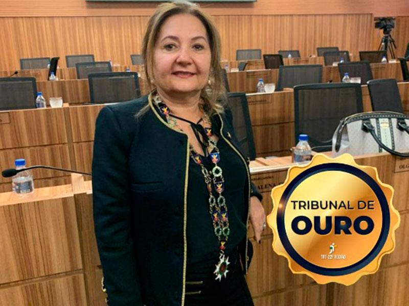 Liana Chaib, Desembargadora-Presidente do TRT Piauí.