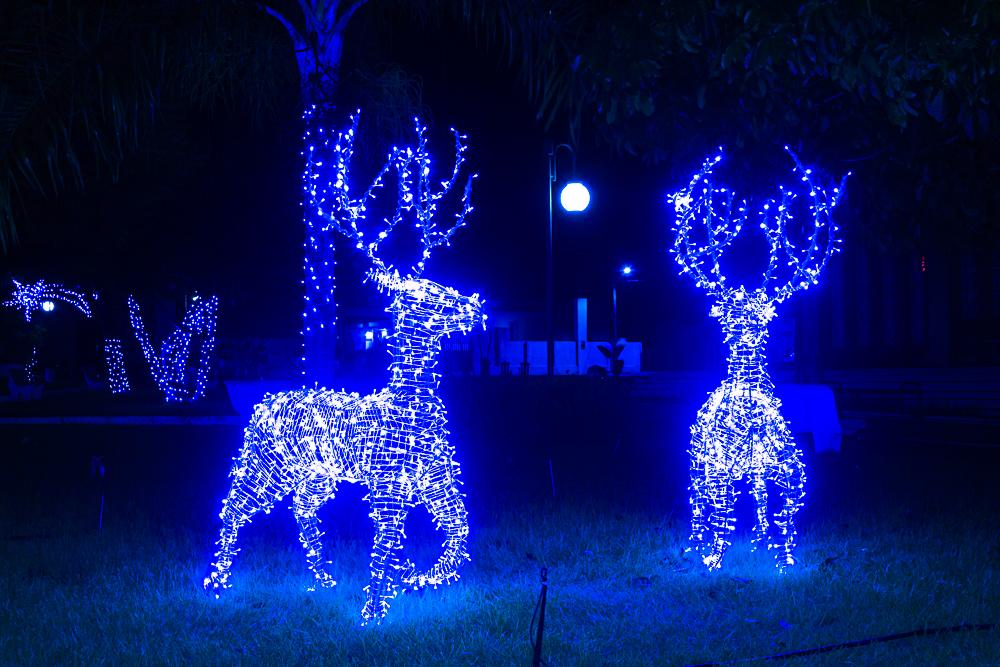 Confira a decoração natalina da praça 28 de Dezembro, em Joaquim Pires - PI - Imagem 23