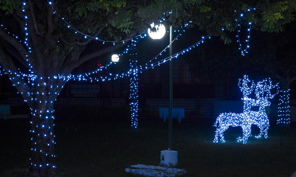 Confira a decoração natalina da praça 28 de Dezembro, em Joaquim Pires - PI - Imagem 8