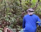 Onça come cachorro em fazenda e restos mortais são encontrados; vídeo