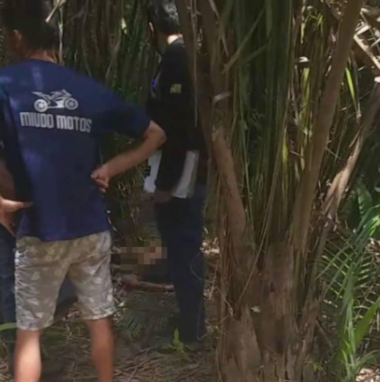 Corpo é encontrado em matagal em povoado de Miguel Alves (Reprodução)