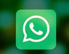 WhatsApp deve liberar em breve 'copia e cola' em massa