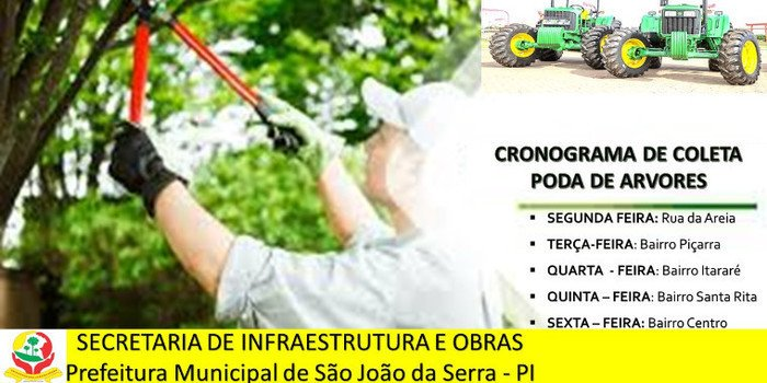 Prefeitura divulga cronograma para poda de árvores