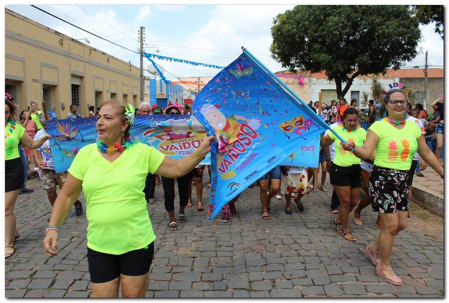Prefeitura de Inhuma realiza carnaval dos Idosos - Imagem 16
