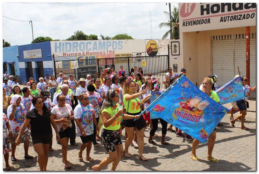 Prefeitura de Inhuma realiza carnaval dos Idosos - Imagem 22