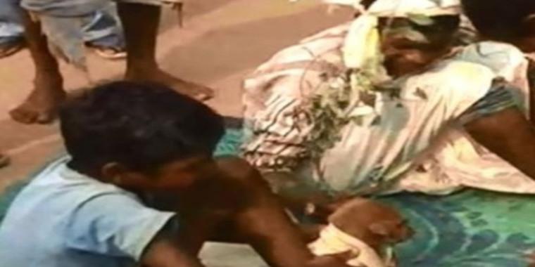 Vídeo inacreditável mostra criança casando com cachorro na Índia