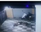 Onça-pintada pula muro de casa e ataca cachorro com toda fúria; vídeo
