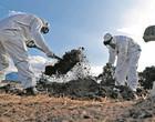 Coronavírus: Brasil tem 396 mortes em 24 horas e total chega a 11.519