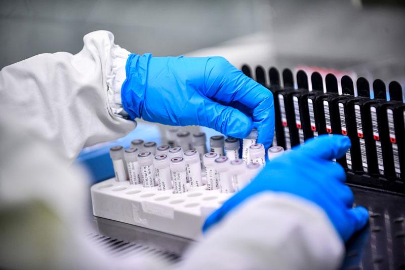 Ministério da Saúde faz pesquisa em THE para avaliar evolução da Covid - Imagem 1