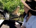 Repórter posa para foto e quase é pega por crocodilo em pântano; vídeo