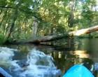 Jacaré derruba homem em rio após ataque a caiaque nos EUA; assista!
