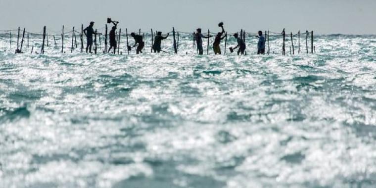 Chico Rasta é o vencedor do I Concurso de Fotografia da Oceana
