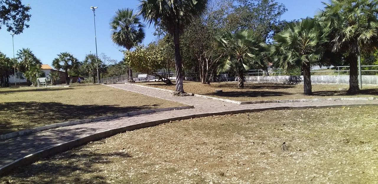 Prefeitura mantendo a limpeza dos logradouros públicos em dia - Imagem 4