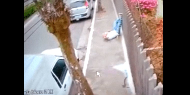 Homem é atropelado por cães em calçada de São Paulo e morre