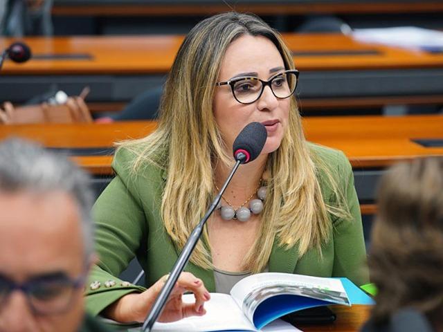 Câmara pede que buscas no gabinete de Rejane Dias sejam anuladas - Imagem 1