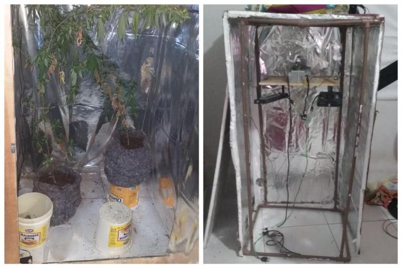 Estufas de plantação de maconha apreendida em residência - Foto: Divulgação/PM-PI