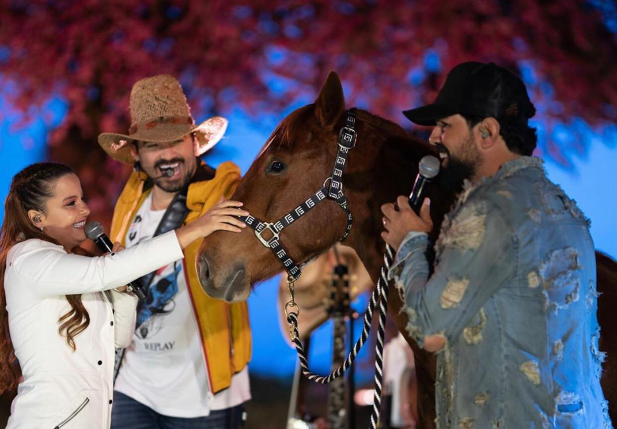 Maiara ganhou um cavalo de presente do namorado
