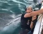 Jovem tenta tirar foto com tubarão baleia e quase é devorado; assista!
