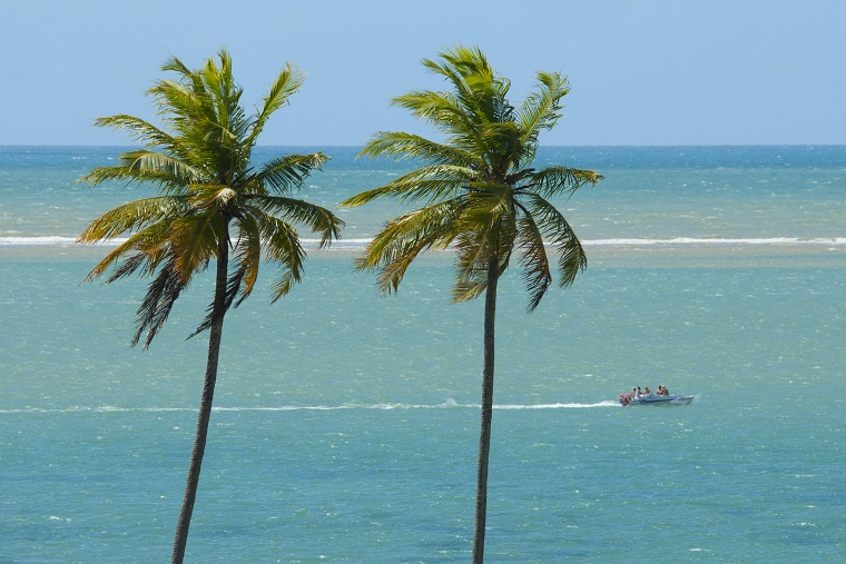 Turistas podem voltar a realizar passeios turísticos e a frequentar as praias de Cabedelo (PB). Crédito: Cácio Murilo/MTur